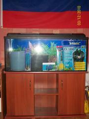Продаю аквариум 240 литров.
